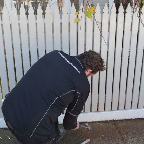 Fence-repairs-maintenance